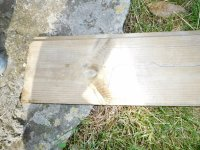 Fig 4 plank.JPG