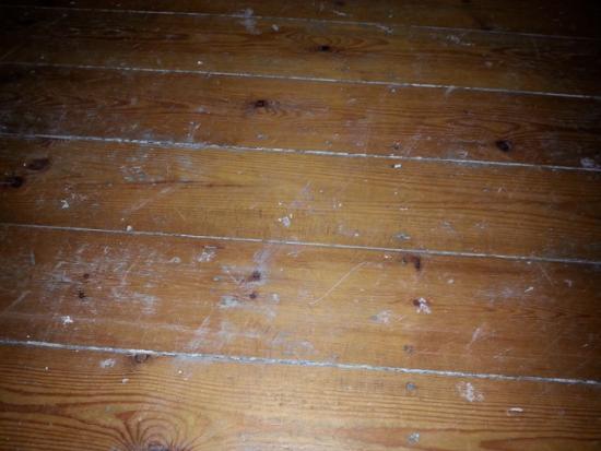 Renovatie oude grenen plankenvloer bouwinfo