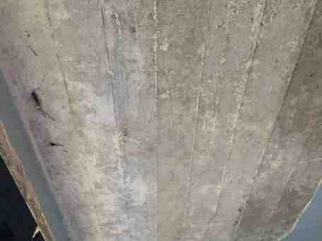 badkamer plafond met betronrot hoe behandelen bouwinfo