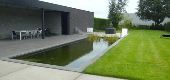 Zwemvijveradvies bouwinfo for Zwemvijver zelf bouwen